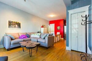 Beautiful, spacious 2 bedroom apartment in the plateau