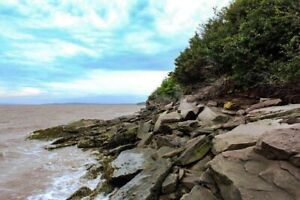 NB oceanfront property. 61.5 acres, 1200 feet of waterfront!!