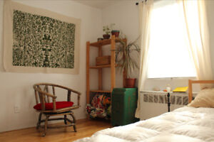 Cute apartment in Mile-End to rent for 2.5 weeks in JANUARY