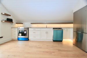 Live in the Coolest Loft Apartment in Petbo!!!
