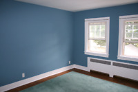Painting and Flooring services