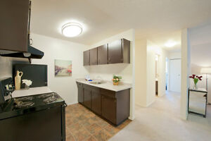 Large and Quiet 1, 2 and 3 Bedroom Suites