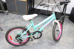 **RAPID** SuperCycle, Fly Girl Bike