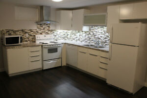 Bright modern basement suite for rent in Ottewell