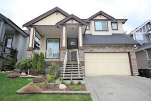 3 Level Custom Built house for sale in Langley