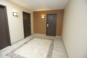 EXCLUSIVE -- BACHELOR APARTMENT in Historical Downtown Galt Cambridge Kitchener Area image 4