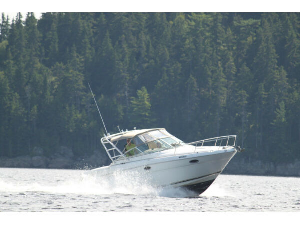 Used 2001 Sea Ray Boats Amberjack 290