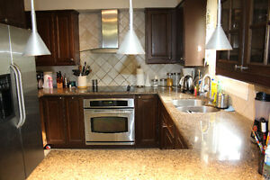 Kitchen Cabinets with granite countertop
