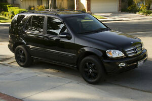 2002 Mercedes-Benz ML500- SUV, Crossover