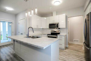 brand new house for rent-whole suites on first floor