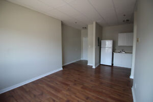 1 Bedroom Apartments for May 1st in Renovated Downtown Building