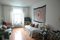 Big apartment in the heart of the Plateau for July and August