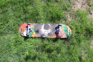Gently Used Skateboard In Brand New Condition