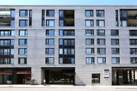For Immediate Rent - Old Montreal condo