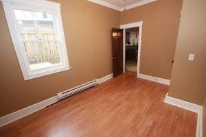 1 bedroom Dt APARTMENT FOR RENT St. John's Newfoundland image 2
