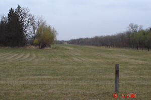 10 acre bld.lot across from Birds Hill Park