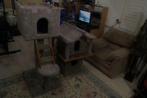Cat houses