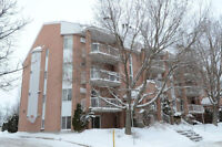 Condo moderne IMPECCABLE Chomedey 2 cac