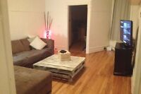Clean and big Montreal plateau apartment with room for rent