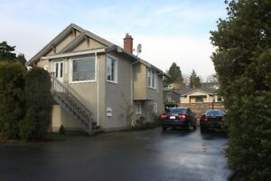 Bright Pet Friendly Strawberry Vale Home