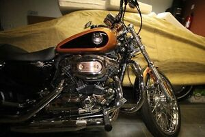 2008 limited edition sportster
