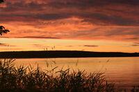 Bord de l'eau- Lac Magog- Côté Est- Magnifique coucher de soleil
