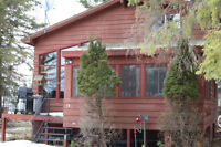 Lakeview Cabin Close to the Beach Available today!
