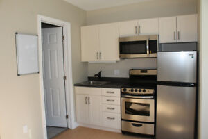 May 1st Lease: Queen's Student Bachelor Apartment very close