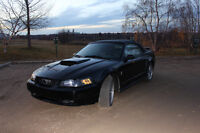 NEED TO SELL 2003 Ford Mustang Convertible