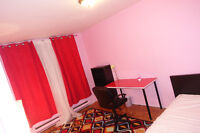 ***** FURNISHED ROOM ALL INCDLUDED (Need Female roommate) *****