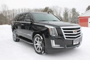 2016 Cadillac Escalade Luxury Collection 4WD | DVD| SUNROOF