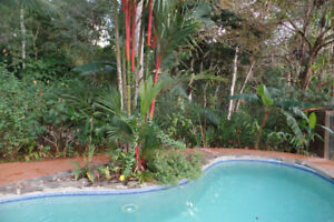 Villa near Dominical and Pacific Beaches in Costa Rica