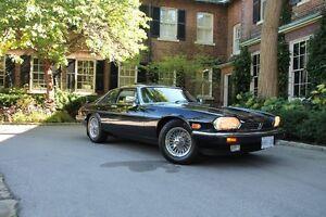 Jaguar 1987 XJS V12