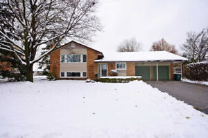 Well Maintained Home With Many Upgrades And Improvements