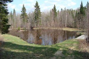 Maison à vendre (domaine) Lac-Saint-Jean Saguenay-Lac-Saint-Jean image 6