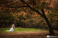 Elegant Wedding Photography - Promo Packages for 2016 Brides!