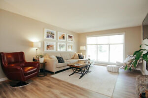 Newly Renovated Lakeview House Rental