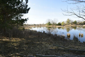 Come Build Your Dream Home in the Country Kingston Kingston Area image 7
