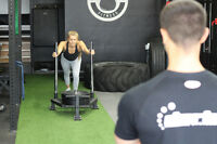 12 Week Shape Shifter Personal Training Program