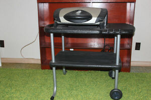 George Forman indoor/outdoor electric grill