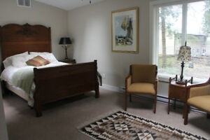 Why stay in a hotel? Furnished, quiet, exec suite $65. Dec 1st.