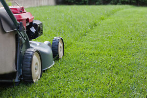 Harvest Hills & Area's Lawn Care & more