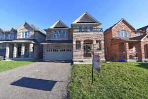 █☆█ 4 bdrm detach in castlemore w/ 2 bsmt apartments buy w/ 0Dwn