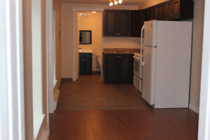 Douglas Ave- Newly renovated 1 bedroom unit available Nov 1