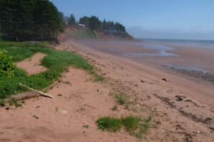 House steps from the beach - PEI - available old home week