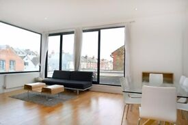 Super affordable penthouse style flat with rooftop garden on Bedford Hill!!!