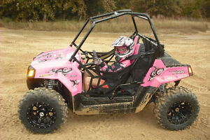 want a polaris rzr 170