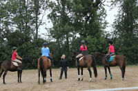 Summer horse and pony camp
