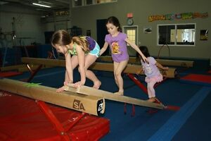 Gymnastics PA Day Camp - November 25 Kingston Kingston Area image 4