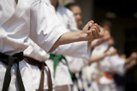New Activity This Fall?  Try Karate!